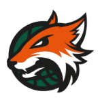 plymouth raiders new logo